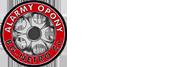 BG Netro Logo